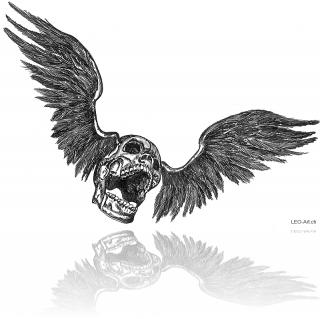 wingedskull